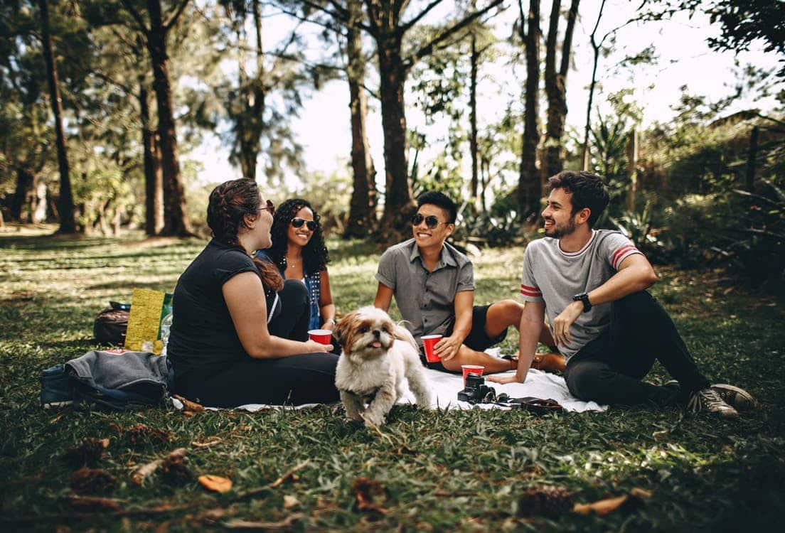 חבורה של חברים עם כלב יושבים בטבע על הדשא וצוחקים