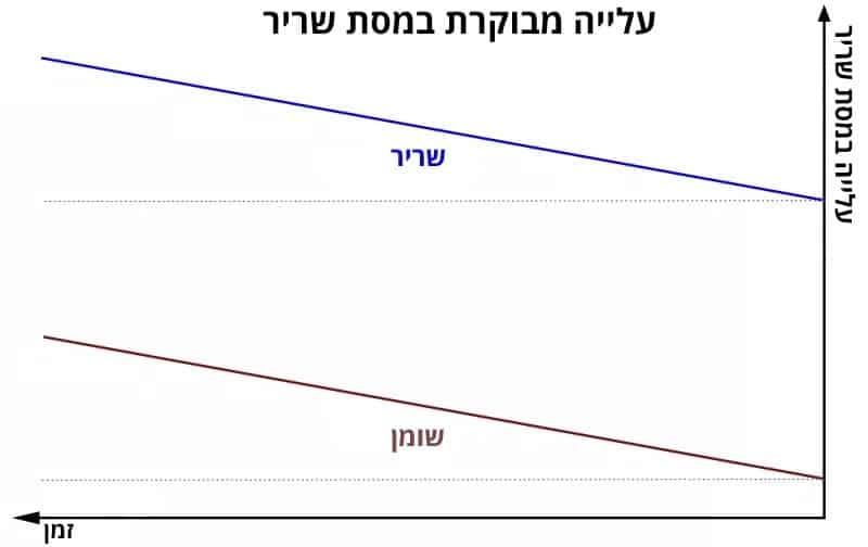 גרף שמתאר עלייה מבוקרת במסת שריר יחד עם שומן