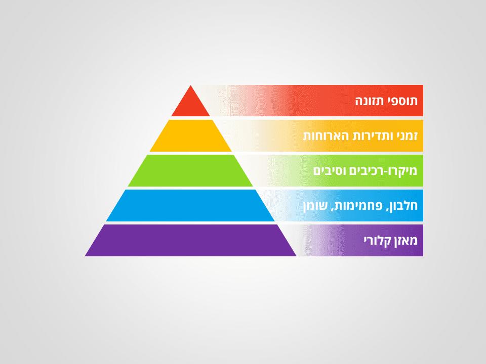 פירמידת התזונה