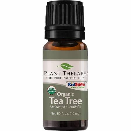 שמן עץ התה אורגני של מותג Plant Therapy
