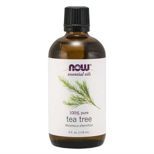 שמן עץ התה טהור 100% של חברת NOW Foods