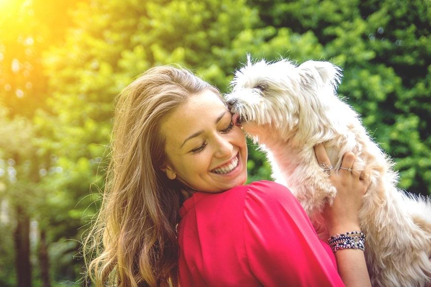 גור כלבים קופץ על הבעלים שלו ומלקק לה את הפנים